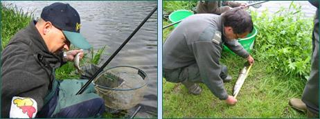 Démonstrations de pêche et initiations - Pêche en Fête 2005 Habay-la-Neuve