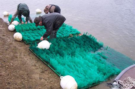 Assemblage des frayères sur le bord du lac de la Plate Taille (fixation des cadres, des chaînes et des bouées)