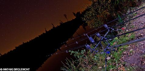 Pêche nocturne de la carpe