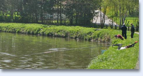 Pêche en Sambre