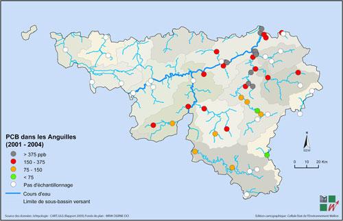 Carte de la teneur en PCB dans les anguilles pêchées en Wallonie