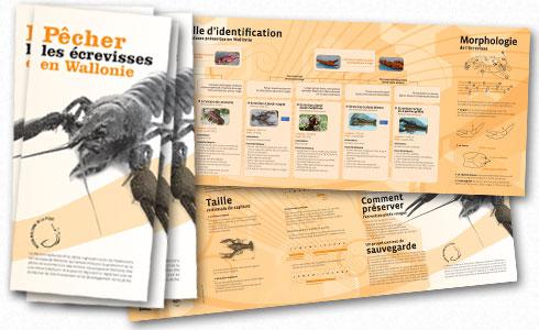 Brochure Pêcher les écrevisses en Wallonie