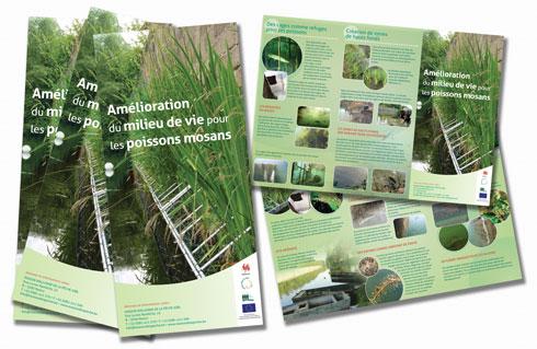 Illustration de la brochure du projet PisciFlore Cheratte