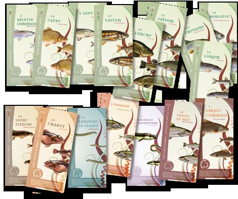 Brochures de présentation des espèces piscicoles